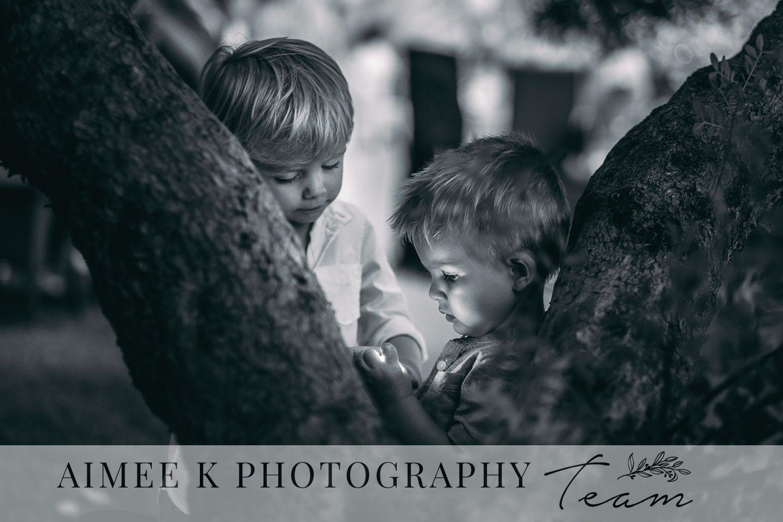 Niños de noche jugando con linterna junto a árbol.