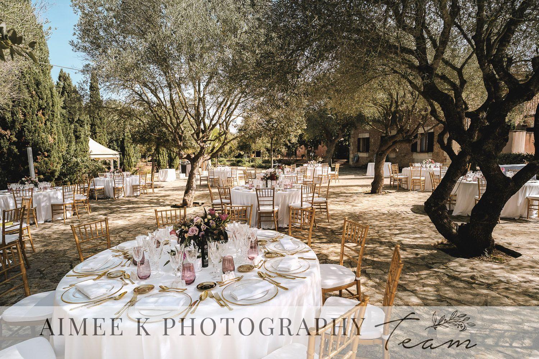 Mesa preparada para banquete de boda al aire libre. Árboles.