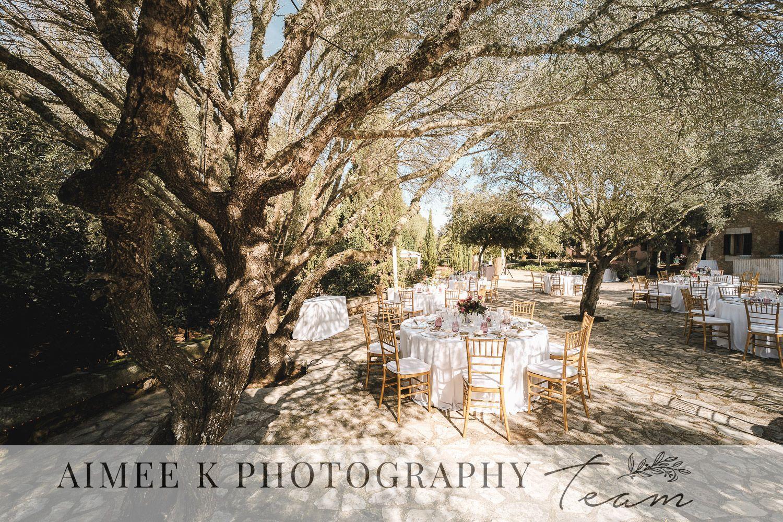 Boda al aire libre. Mesas de banquete bajo árbol.