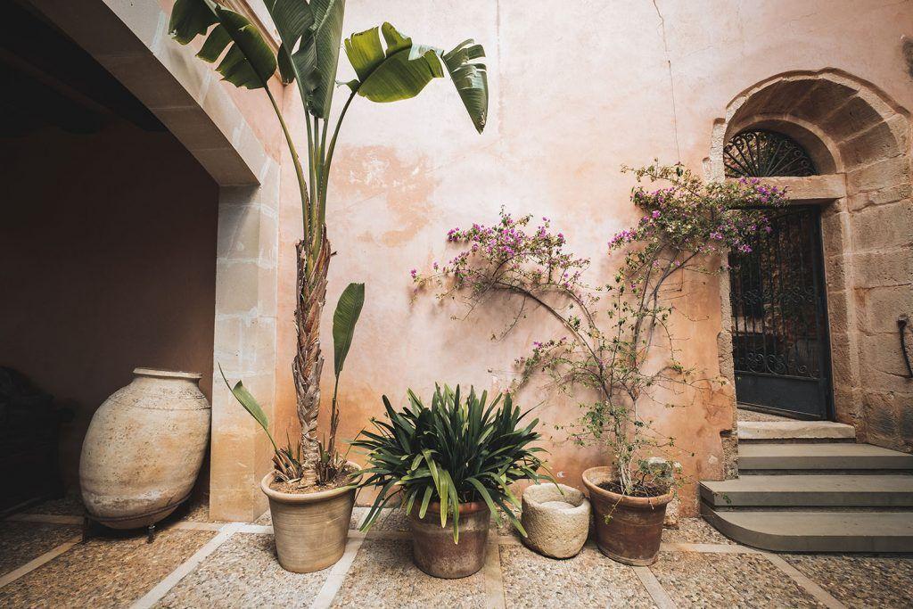 S'Horta d'Avall. Plantas decorativas junto a fachada interior.